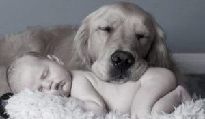 Goldie and Baby